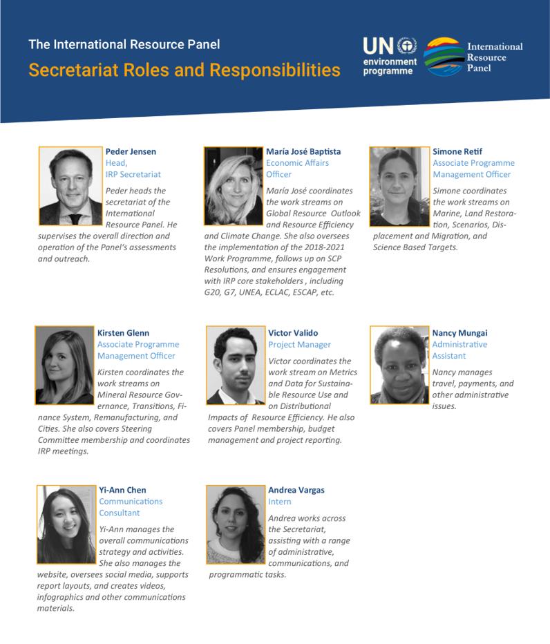 IRP Secretariat roles