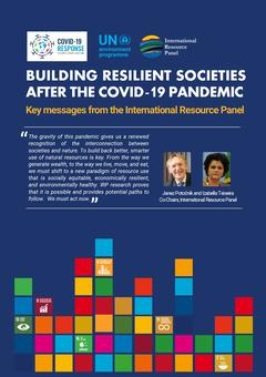 IRP Building Resilient Societies after Covid-19